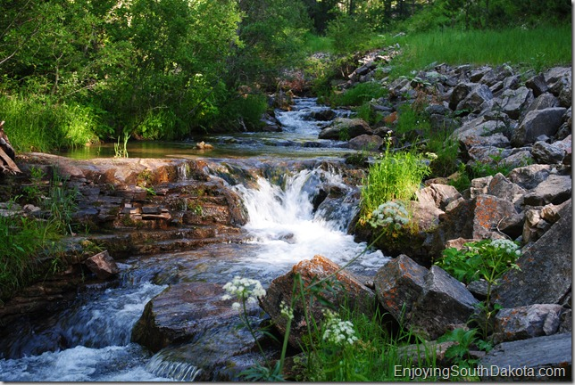 photo Iron Creek in Spearfish Canyon