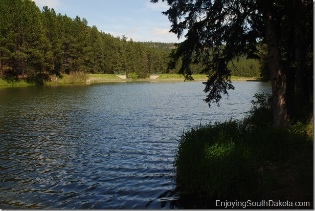 photo of south dakota's dalton lake in the black hills