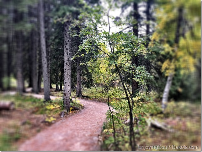 Spearfish Falls Hiking Trail check out